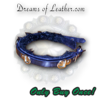 Custom Play Collar