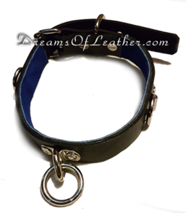 DreamsOfLeather.com Collar Regular