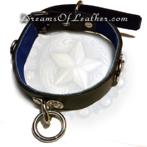 Play Collar Dreams of leather